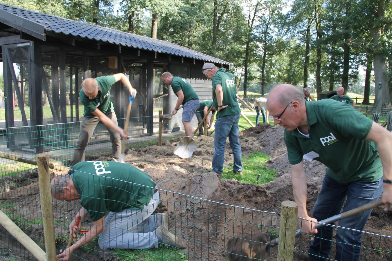 Samen de omheining van de konijnenheuvel maken